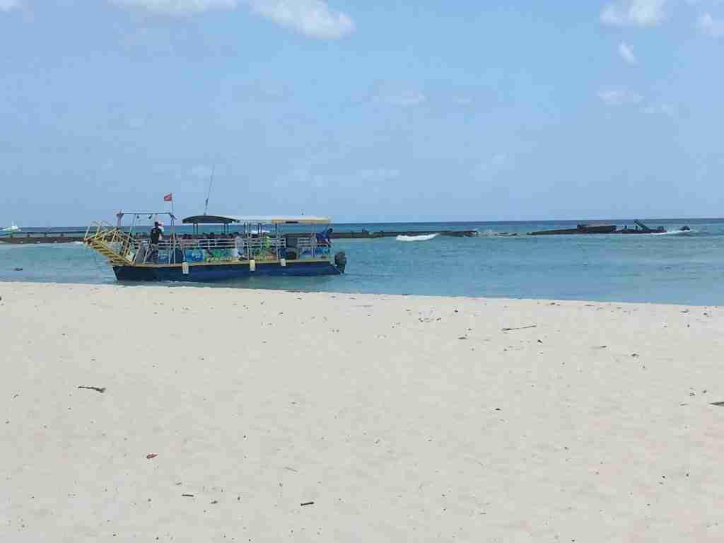 1 Bajan Bus