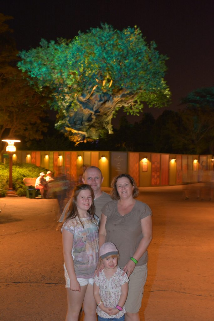 New Night Time Entertainment Animal Kingdom