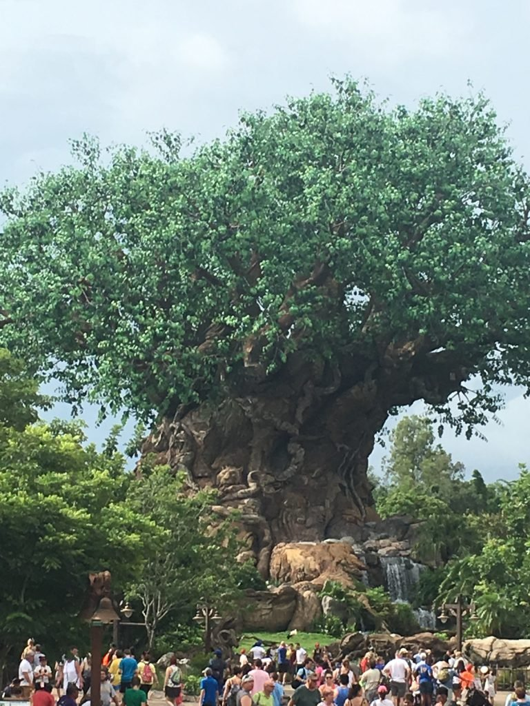 Tree of Life Animal Kingdom facts
