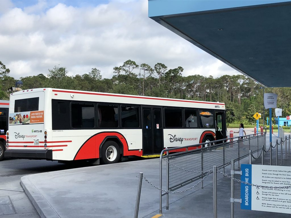 Walt Disney World for Beginners. Disney World Bus