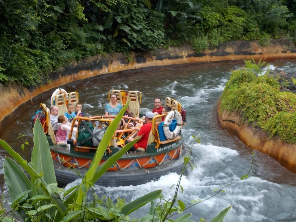 Top 5 Animal Kingdom Must Do Attractions