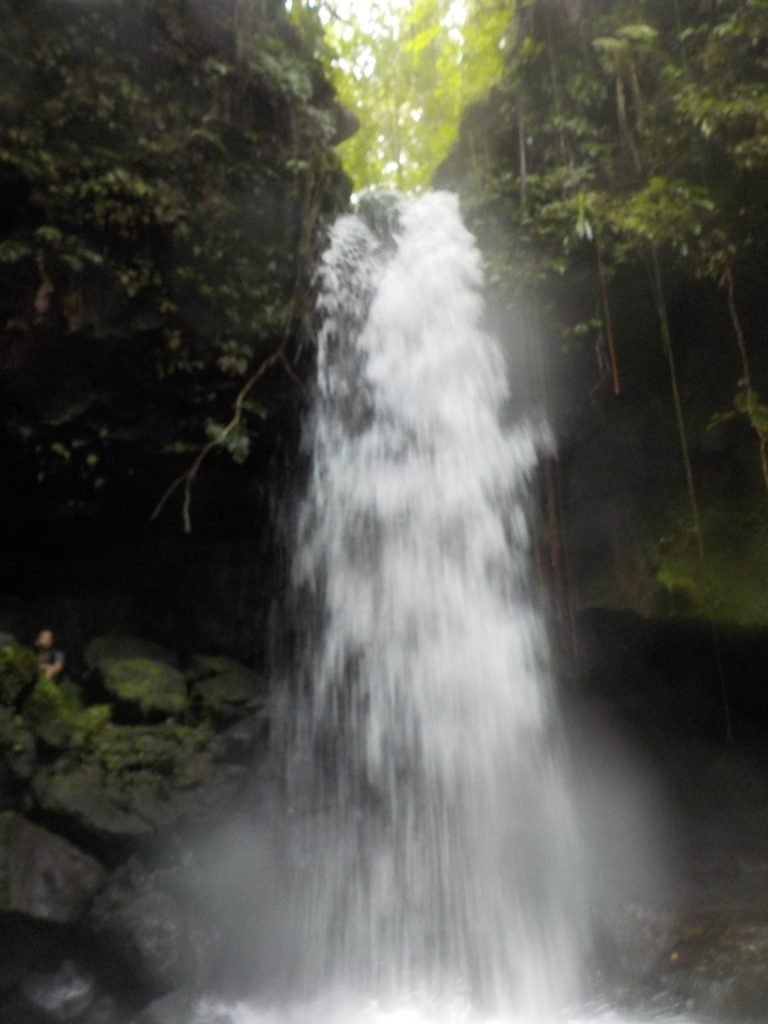 One of the many Dominica Waterfalls