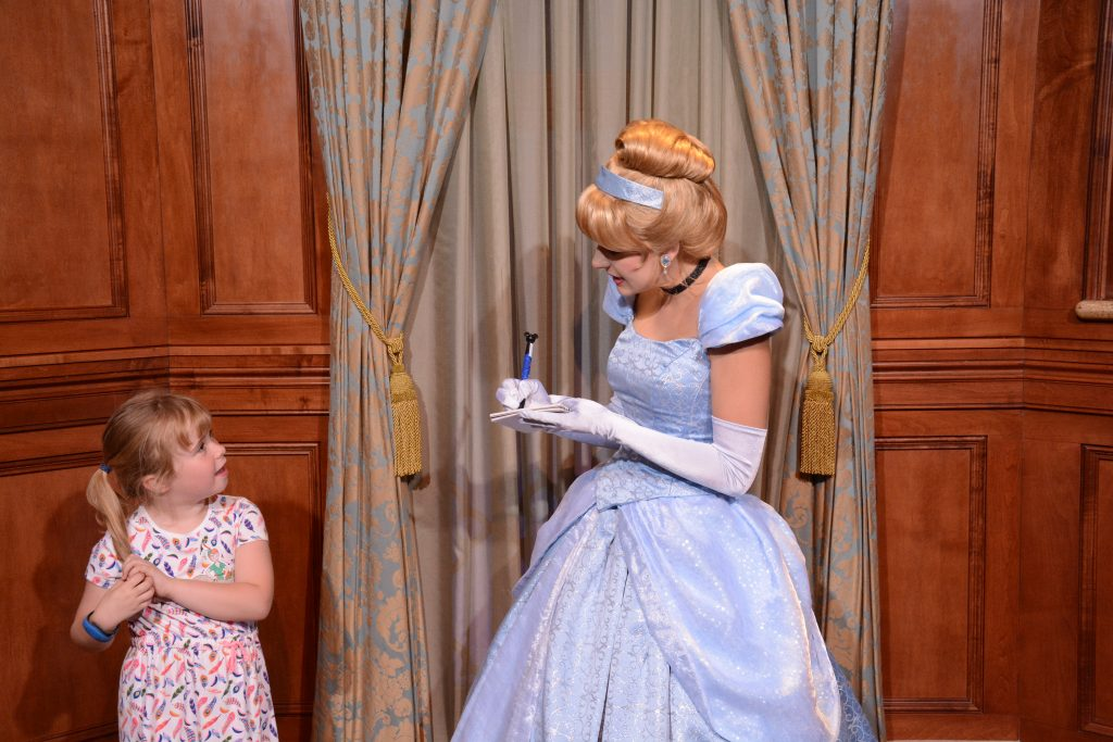 Cinderella Guide to the Magic Kingdom