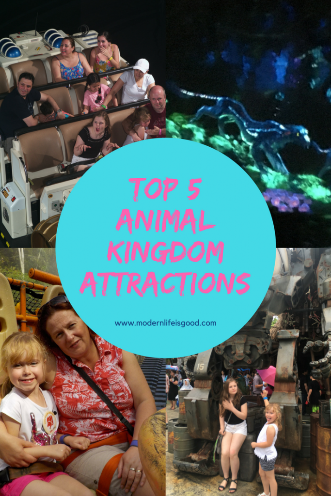 Top 5 Animal Kingdom Must-Do Attractions