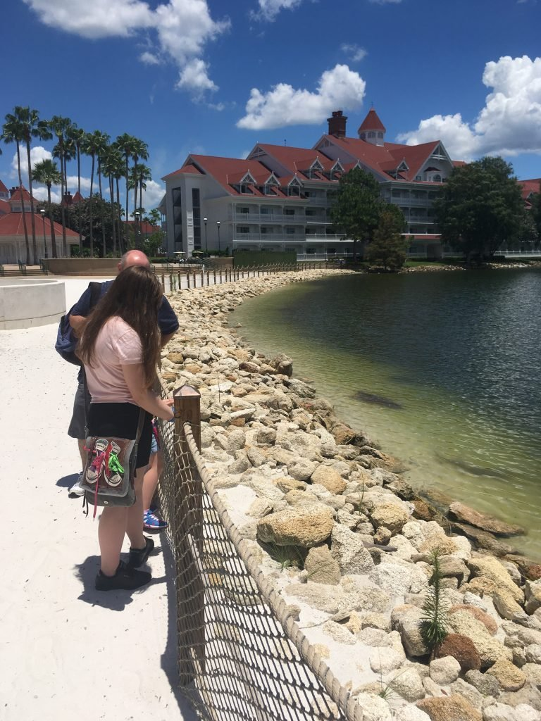 Disney's Grand Floridian Bay Lake