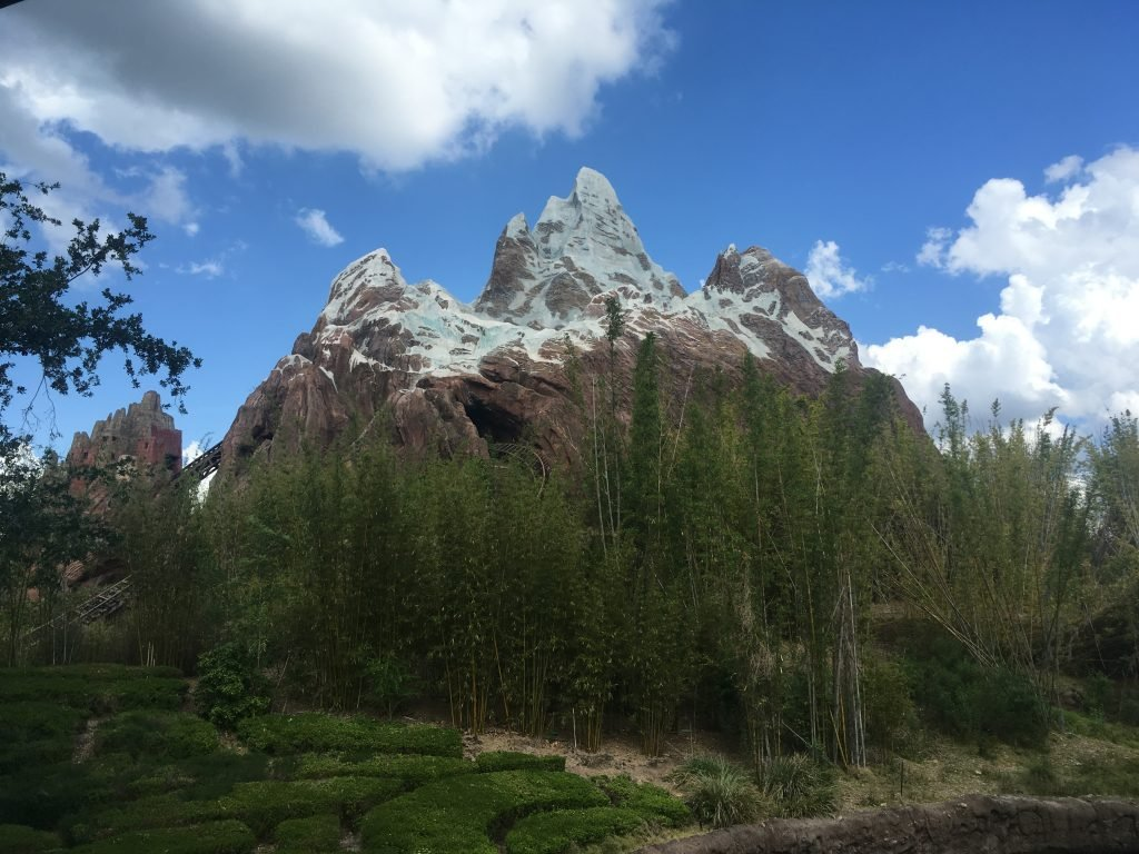Expedition Everest Guide to Animal Kingdom for Beginners
