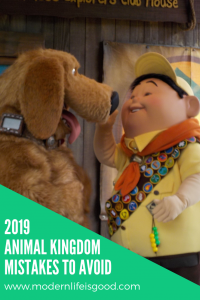 Animal Kingdom Mistakes to avoid to have a great Disney World Holiday