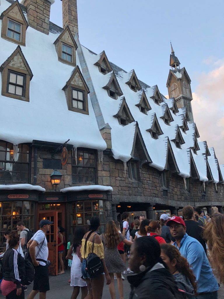 A crowded Wizarding World of Harry Potter