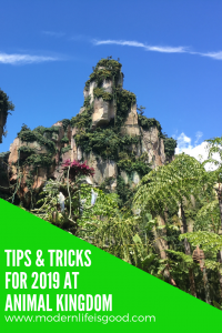 Following the opening of Pandora - The World of Avatar it is essential you have a plan. Here are our Top Animal Kingdom Tips and Tricks.