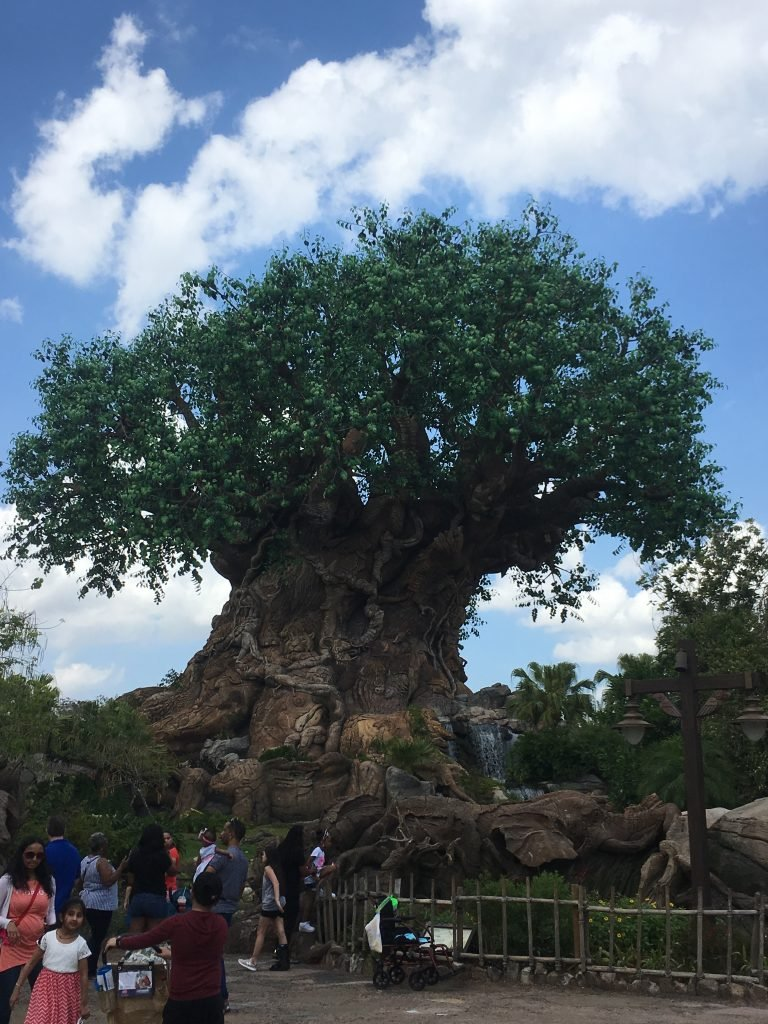 50 Fascinating Walt Disney World Facts Tree of Life