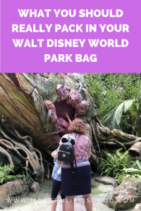 What you need to pack in your Walt Disney World Park bag