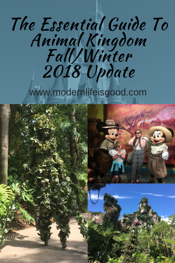 Updated for Fall/Winter 2018 our Guide to Animal Kingdom for Beginners is an essential guide for first-time visitors & experienced travellers. Find out all you need to know about Disney's Animal Kingdom and how to handle Orlando's hottest attractions at Pandora - The World of Avatar. In addition, we have all the latest changes at Disney's Animal Kingdom.