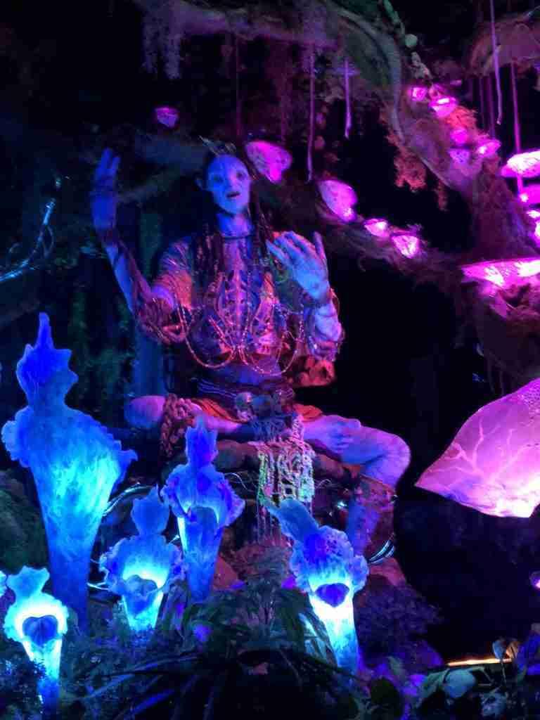 Na'vi River Journey at pandora - The World of Avatar