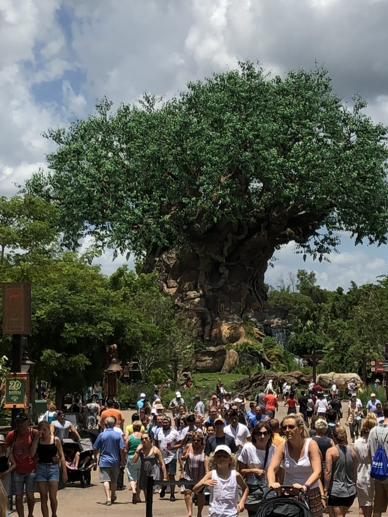 Guide to Walt Disney World Tickets