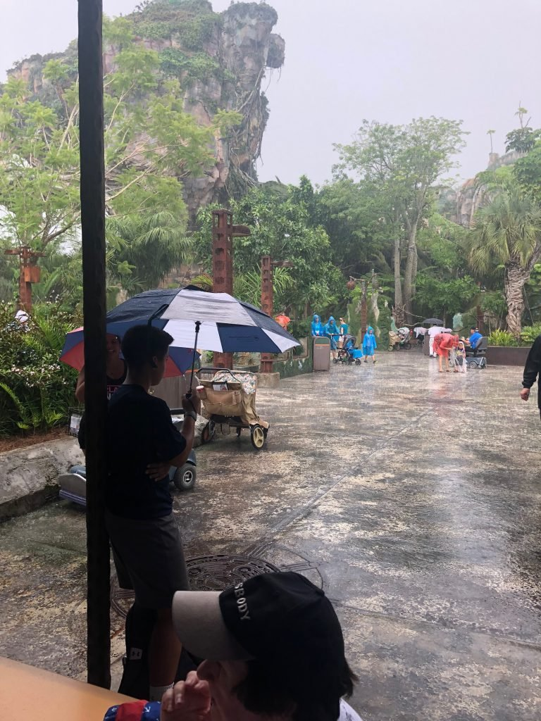 Rain in Pandora Animal Kingdom