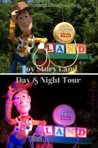 Toy Story Land Day & Night Tour