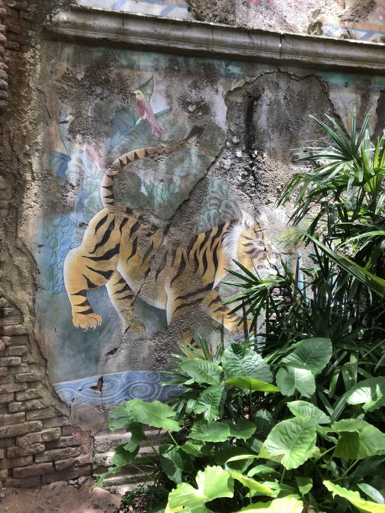 Animal Kingdom Family Travel Guide