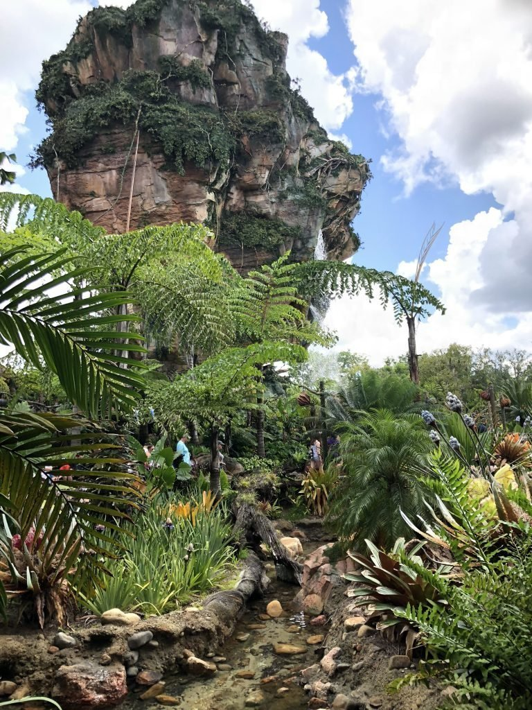 Essential Animal Kingdom Tips & Tricks