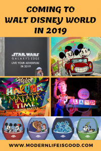 If you are planning to visit during 2019, here is everything that is New at Walt Disney World in 2019.