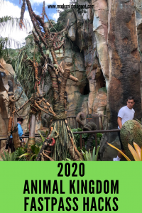 Are you planning to visit Disney's Animal Kingdom during 2020? The Animal Kingdom is a busy park, and since the opening of Pandora – The World of Avatar, it is getting busier. You must have an Animal Kingdom FastPass Strategy to get most from your visit. Our Animal Kingdom FastPass Hacks will provide you with tips and tricks to have a great vacation.