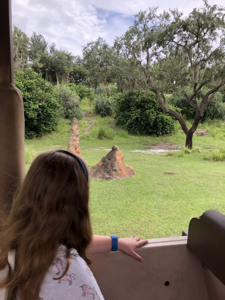 Kilimanjaro Safaris Guide to Animal Kingdom