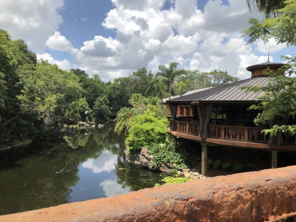 Animal Kingdom Tips, Tricks & Hints