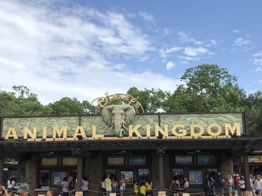 Tips & Tricks for visiting Animal Kingdom