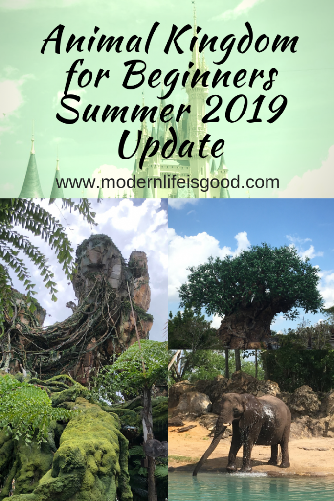 Updated for Summer 2019 our Guide to Animal Kingdom for Beginners is full of the latest information to plan your Walt Disney World Vacation. Our tips and Tricks are family focused and will ensure you have a great vacation, whether you are a first-time or repeat visitor.