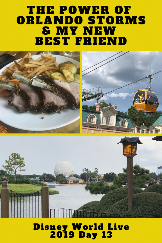The power of Orlando Storms & I Have a New Best Friend. Plus Spice Road Table Review Disney World Live 2019 Day 13