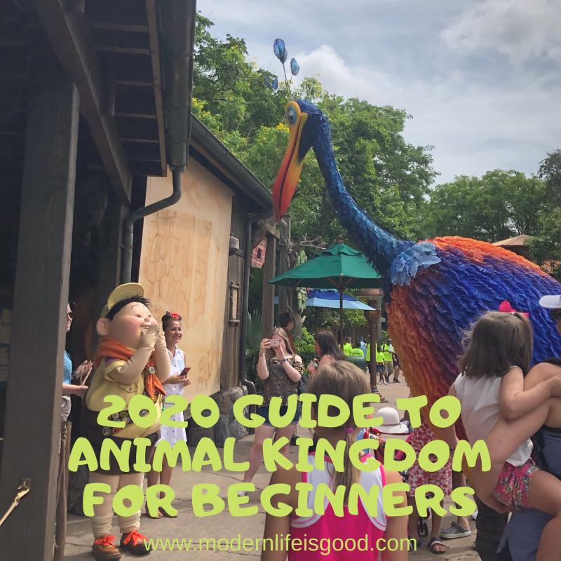 Our Guide to Animal Kingdom for Beginners is full of the latest information to plan your Walt Disney World Vacation. Our