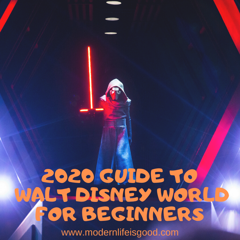 Our Guide to Walt Disney World for Beginners has been updated for 2020 with all the latest information from the resort.