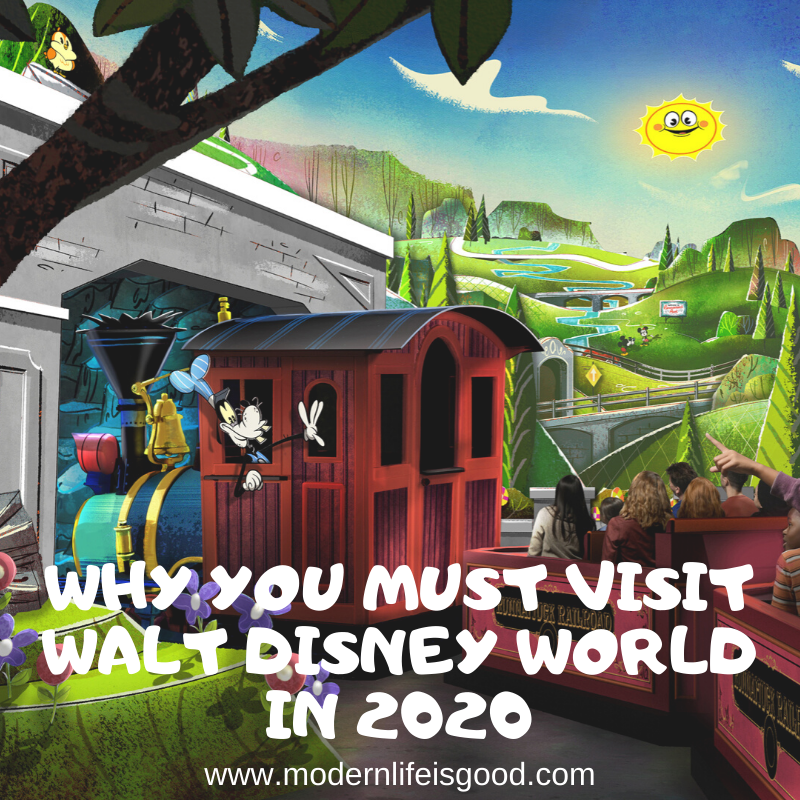 We advised that we thought both 2020 & 2021 looked like better years to visit Walt Disney World compared to 2019. We now believe 2020 is the year you MUST visit Walt Disney World.