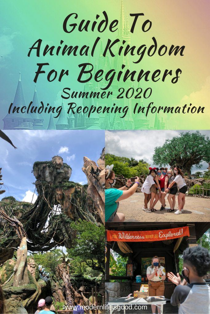 Our Guide to The Animal Kingdom has been updated following the reopening of Walt Disney World. This is the ultimate Animal Kingdom planning resource for summer 2020 and beyond.