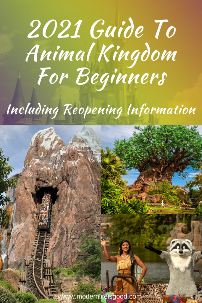 Our Guide to Animal Kingdom for Beginners is full of the latest information to plan your Walt Disney World Vacation. Our tips and tricks are family-focused and will ensure you have a great vacation, whether you are a first-time or repeat visitor. Remember, even if you have visited the Animal Kingdom before, there are many changes to how you plan your vacation in 2021