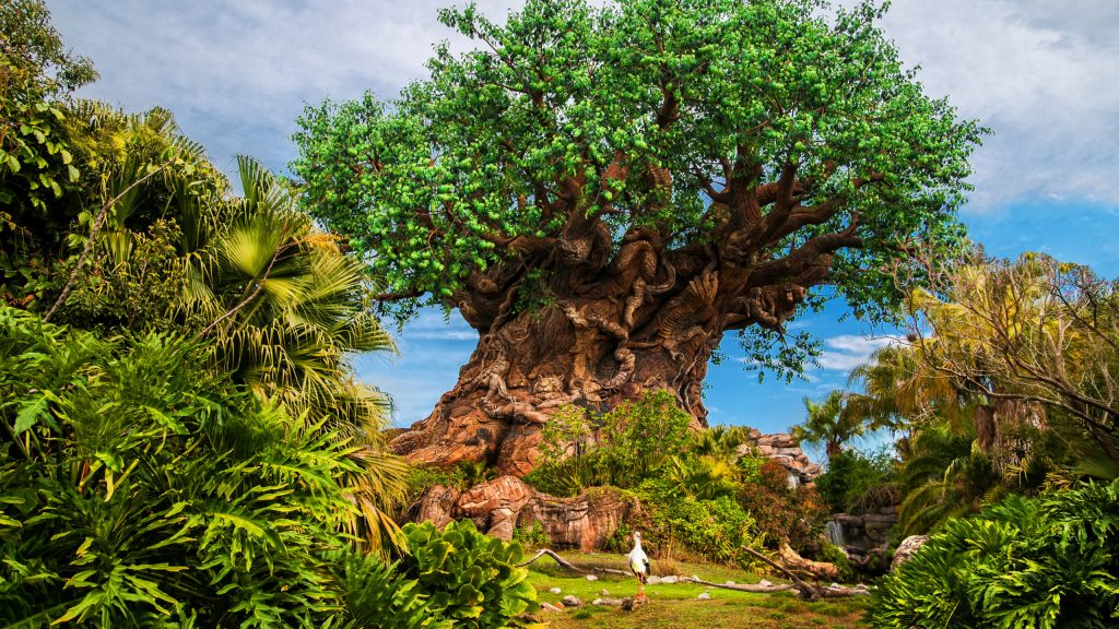 The Ultimate Planning Guide to Disney's Animal Kingdom 2021