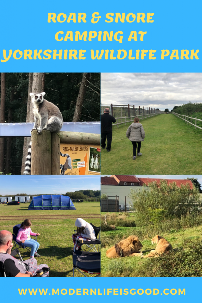 2020 has been a year to rediscover what the United Kingdom has to offer. While foreign vacations have been difficult or even impossible, U.K. tourism has gradually reopened throughout the summer. Camping at Yorkshire Wildlife Park's Roar & Snore was an unexpected highlight of our summer. An opportunity to wake up to the roar of the park's lions!
