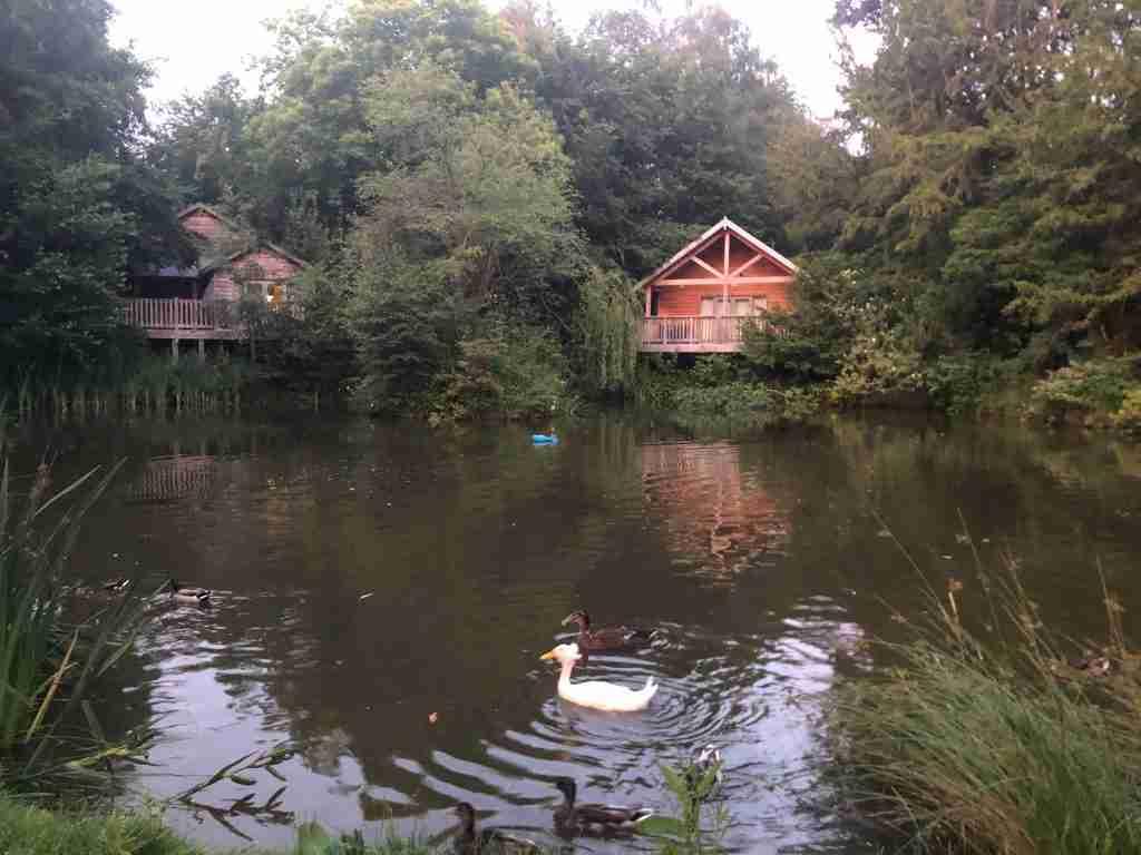Henlle Hall Lodges Shropshire